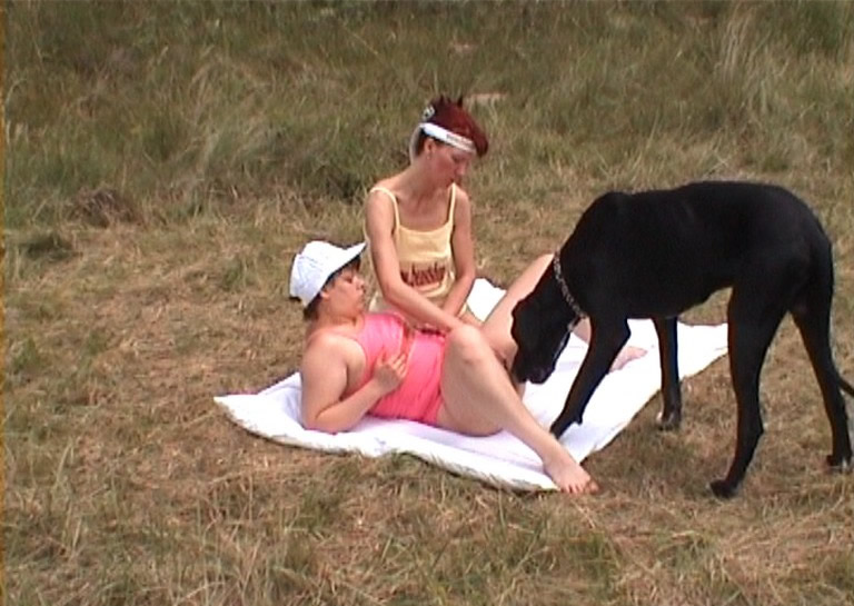 Lovers bestiality Explore Dog